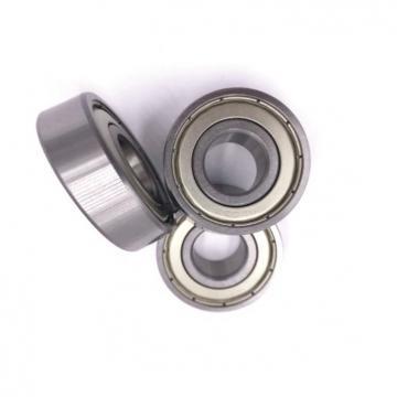 Japan Original NSK 6005du2 bearing