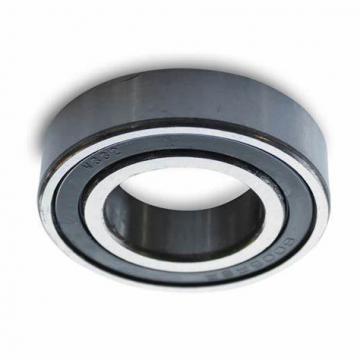 Japan Nsk 6005du2 bearing 6005 25x47x12mm