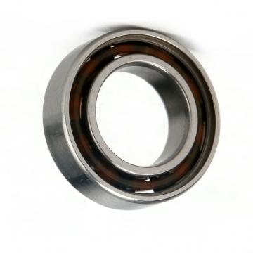 Ceramic Bearing 6008ce-2RS